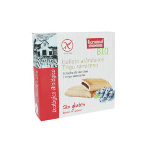 Galletas sin gluten de trigo sarraceno con arándanos
