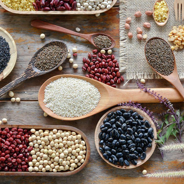 Descubre las proteínas vegetales